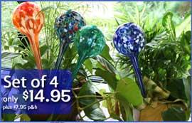 Aqua Globes 4 pc Set