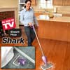 H2O Steam Mop